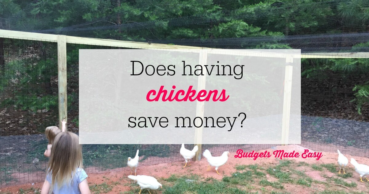Does having chickens save money?