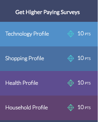 survey junkie point summary