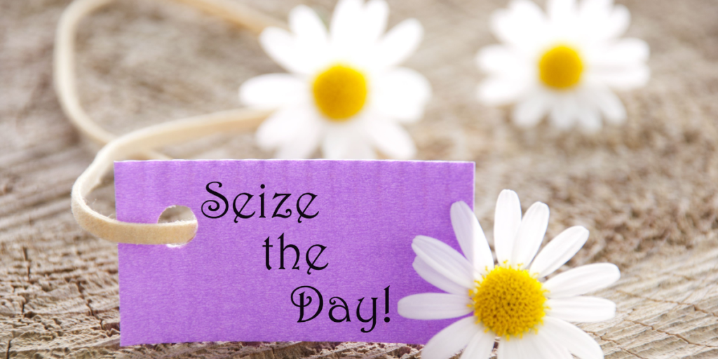 "Three daisy flowers placed around a purple card that says ""seize the day"" when it comes to reaching your financial goals."